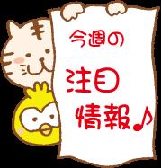 nn_tyumoku_m.png